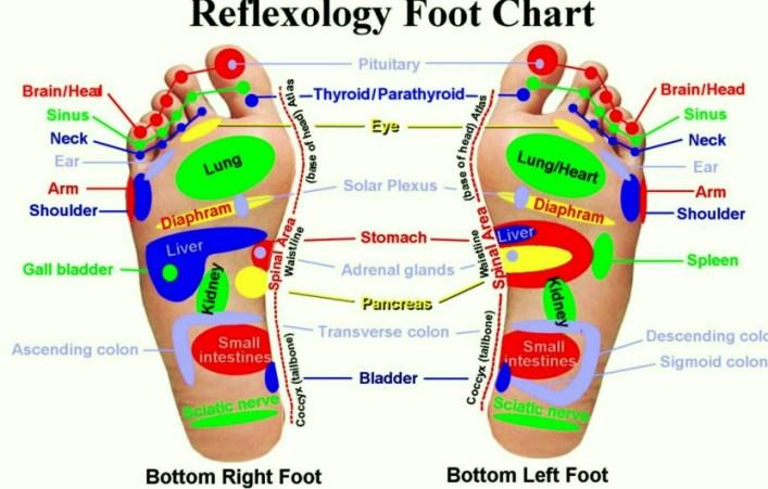 reflexfootee